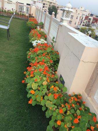 Gentil Om Niwas: Terrace Garden