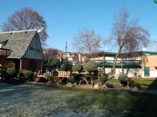Tiki Village Motor Inn: motel gardens