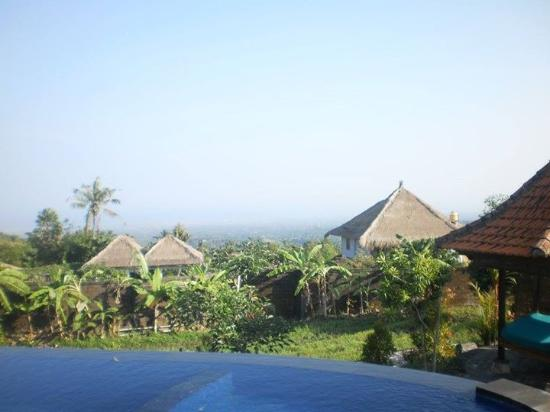 Rini Hotel: Hotel uitzicht