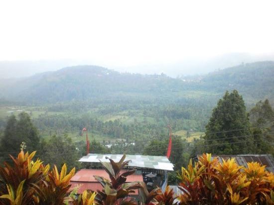 Rini Hotel: Uitzicht tijdens wandeling