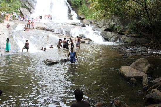 Almost Stagnant Pool at Monkey Falls, Pollachi