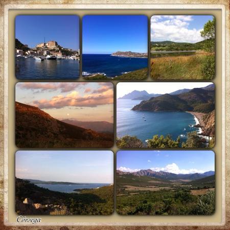 Fiori Di Santa Giulia : A ilha de todas as cores