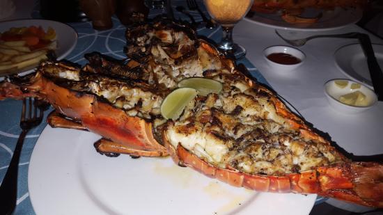 Petit St.Vincent: Lobster !