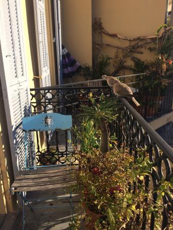Hotel Wilson: photo0.jpg
