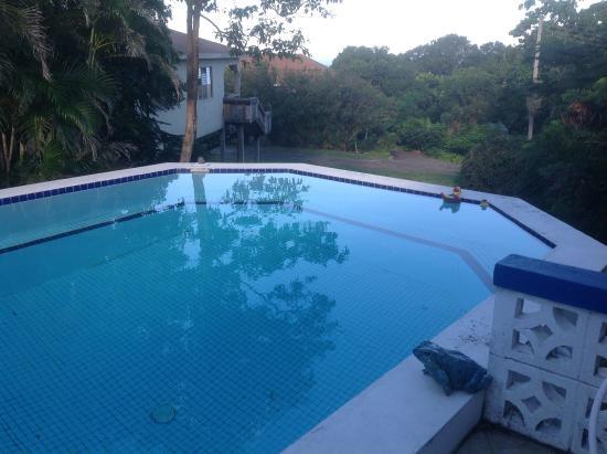 Erindell Villa Guest House: Outside pool