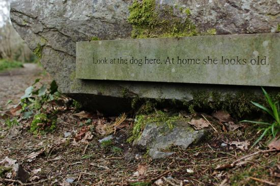 Ashford, Irlanda: Words To Ponder