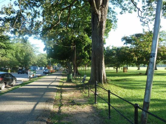 Queens Park - Picture of Queen's Park Savannah, Port of ...
