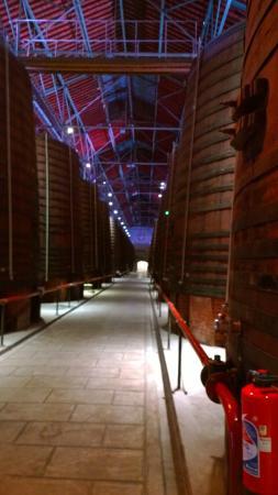 Thuir, Γαλλία: Les allées