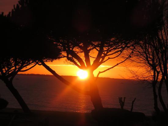 Coucher de soleil vu de la chambre mercure chatelaillon picture of mercure les 3 iles for Les chombre a coucher
