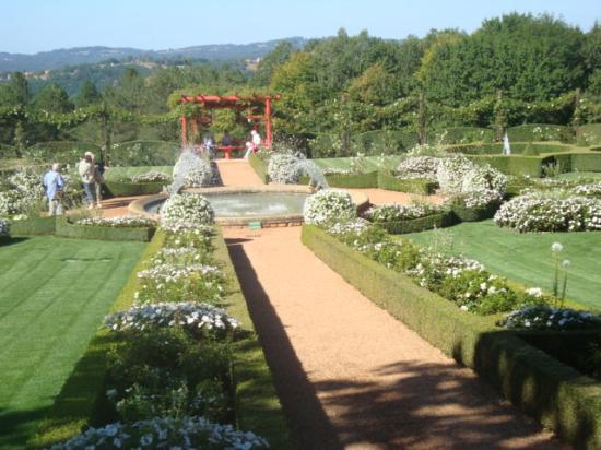 Jardin d 39 eyrignac all e vers coin asiatique photo de les for Vers du jardin