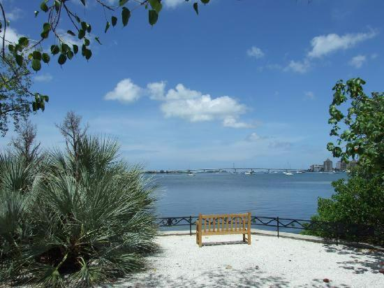 Marie Selby Botanical Gardens: Sarasota Bay From Selby Gardens