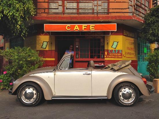 The Traveling Beetle - Day Tours