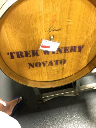 Trek Winery Novato, California