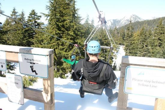 Grouse Mountain Ziplines Zip Lining