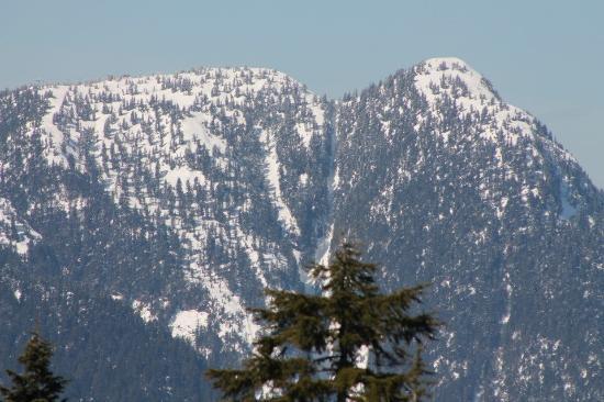 Grouse Mountain BC Sleigh Ride