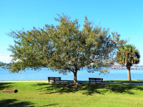 Fortunato Park: That's my spot