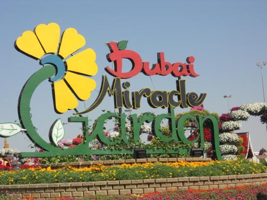 dubai miracle garden entrance - Miracle Garden Dubai