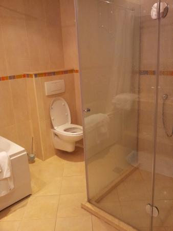 Badkamer met dubbele wastafel, douche, bad met douche en toilet ...