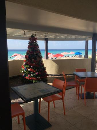Xmas tree and view from bar