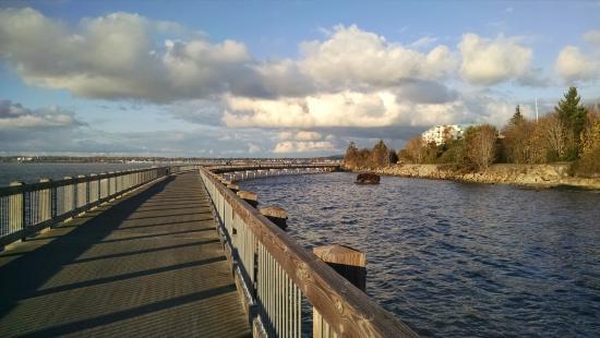 The Chrysalis Inn & Spa: Oceanside walk