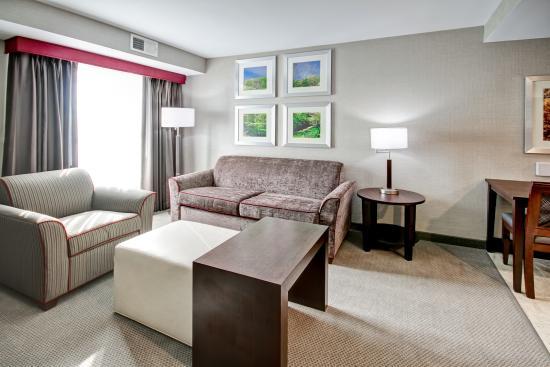 Branchburg, Nueva Jersey: Suite Living Room