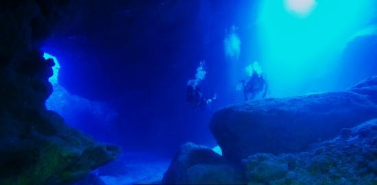 Magical Niue Sea Adventures