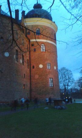 Södermanland, Sverige: 20151206_153519_large.jpg