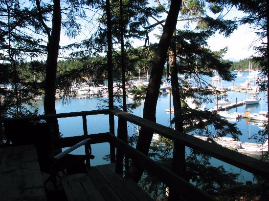 Page's Resort and Marina: deck