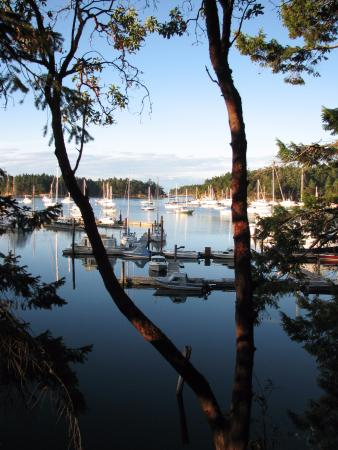 Page's Resort and Marina: view from deck