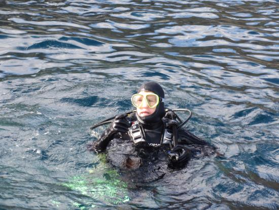 Dive Catalina : Water's fine - in a 7 mil wetsuit