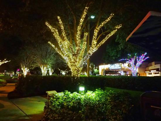 Bluegreen Fountains Resort Pointe Orlando Lighting