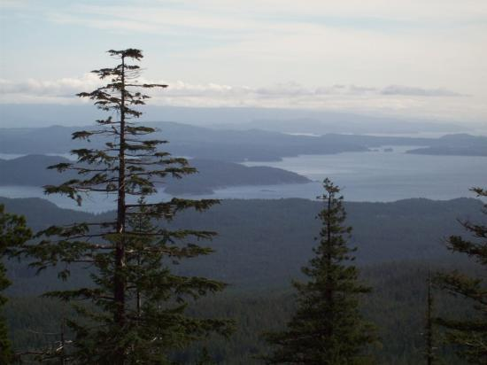 The view south from Chinese Mountain, Quadra Island, Canada