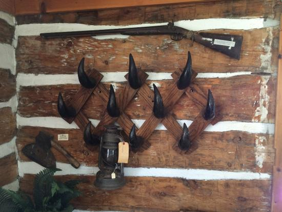 Belle Fourche, SD: pioneer cabin coat rack