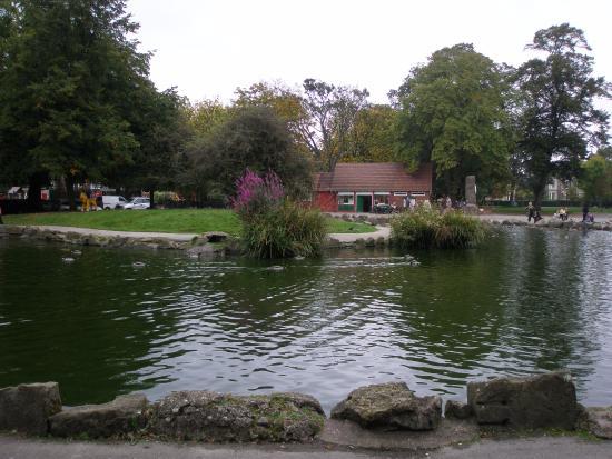 Pearson Park Wildlife Garden