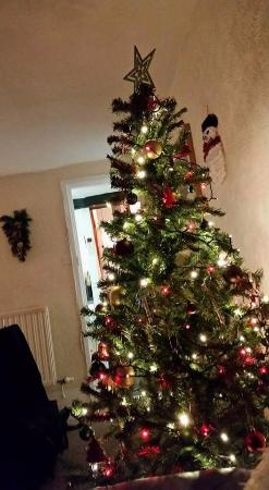 Cumbria, UK: Christmas tree