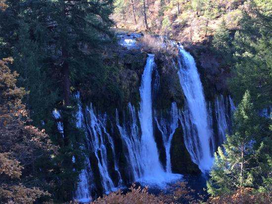 Burney Falls From A Higher Elevation Picture Of McArthurBurney - Higher elevation