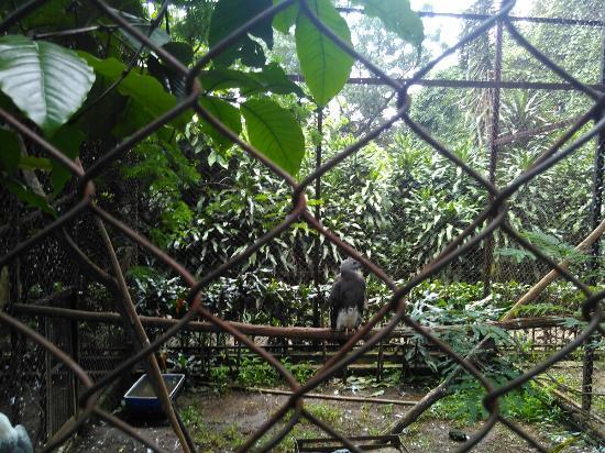 kebun-binatang-bandung.jpg