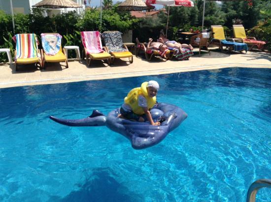 Celik Apartments: Fun in the sun
