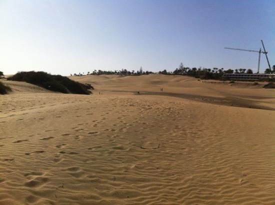 dune3 - Picture of Playa de Maspalomas, Maspalomas - TripAdvisor
