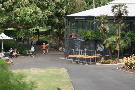 The Opera House To The Botanic Gardens Walk: Sydney Botanical Garden  Restaurant