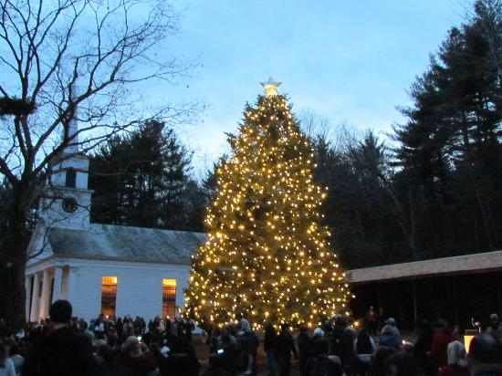 Old Sturbridge Village: Tree after lighting