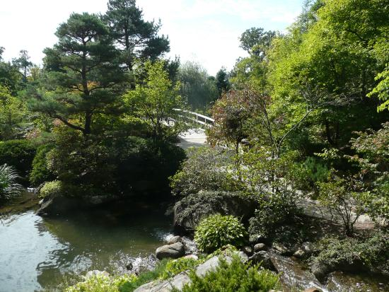 Anderson Japanese Gardens: scenes from the gardens
