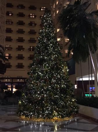 Renaissance Orlando Resort at SeaWorld: Holiday Tree in lobby