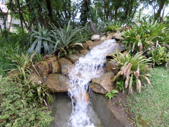 mini jardim curitiba : mini jardim curitiba:Mini Cachoeira – Foto de Jardim Botânico de Curitiba, Curitiba