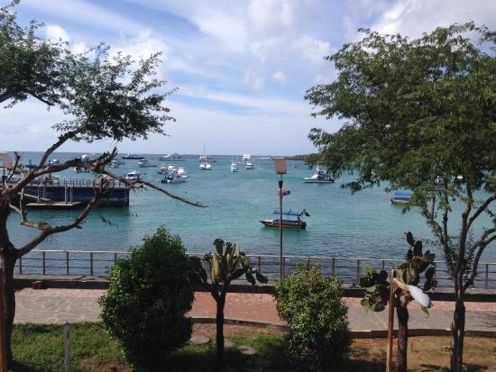 Restaurante Miconia: la vista desde el restaurante