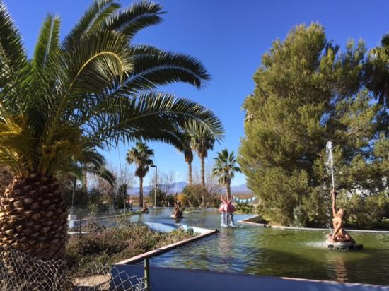 High sierra oasis/ route 66: The water, a must in an oasis!
