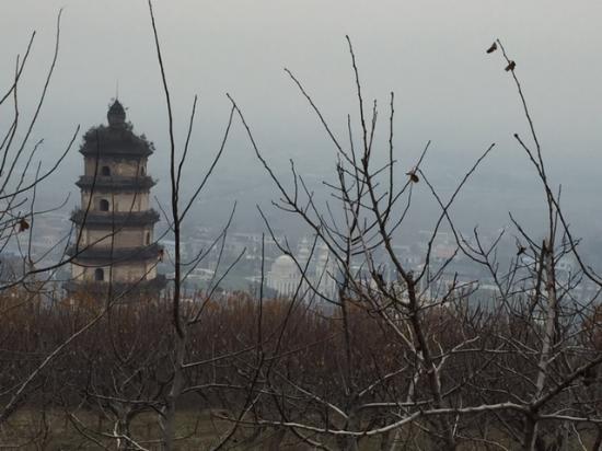 Zhouzhi County, Kina: Daqin Pagoda in winter