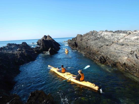 Region X: Explore the marine park