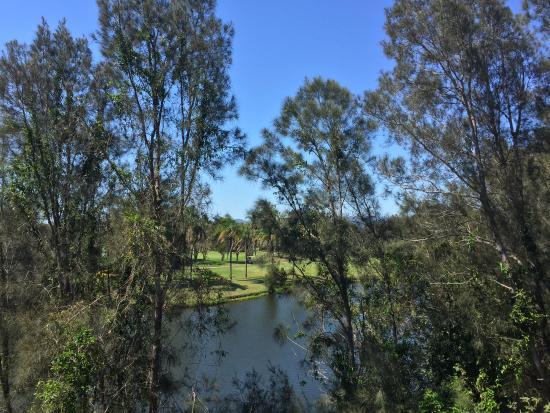 Mercure Gold Coast Resort: View from 2nd Floor Honeyeater Block
