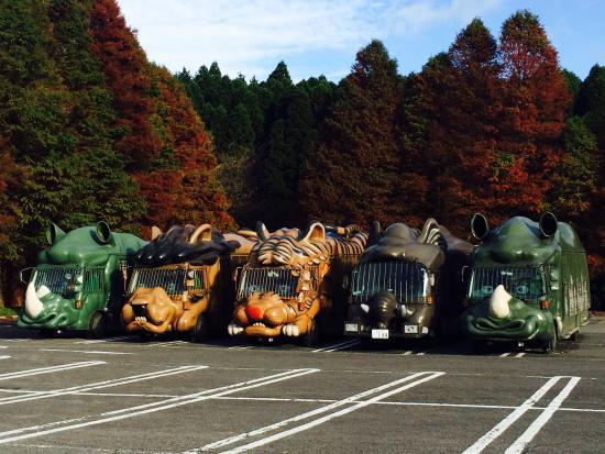 Usa, Japan: photo0.jpg